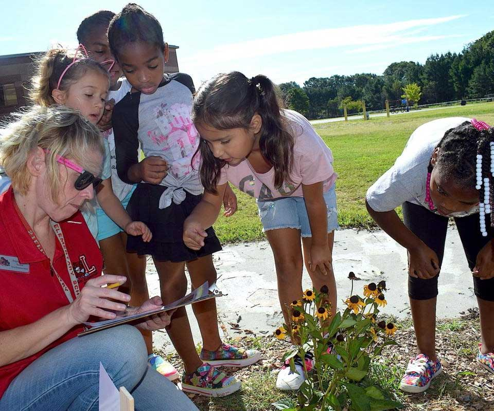 Lovin Elementary students learn about bees while helping out with statewide pollinator count
